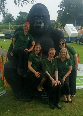 Five band members in front of a large gorilla